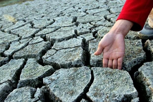 Cambio climático, ciencia y gestión ambiental