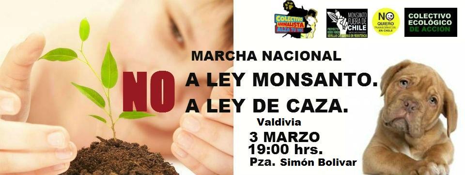 Marcha en rechazo a la ley de caza y en contra de la ley Monsanto en Valdivia