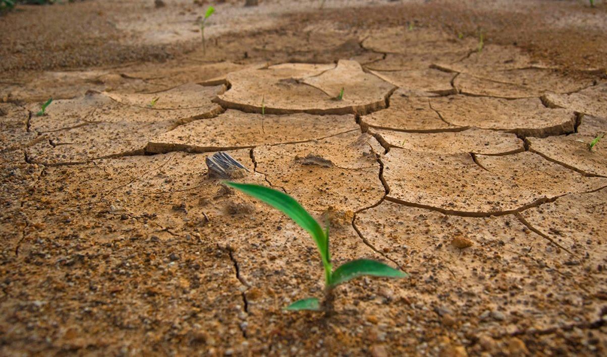 Taller - Cambio Climático ¿De qué (No) estamos hablando?