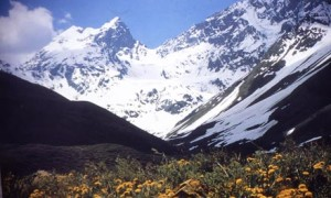 Lo que arriesga Pascua Lama tras la resolución del Tribunal Ambiental contra la sanción de la SMA
