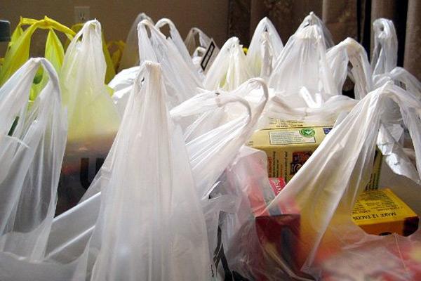 Fin a las bolsas plásticas en todo Chile: contundente respaldo al proyecto que pasa a tercer trámite