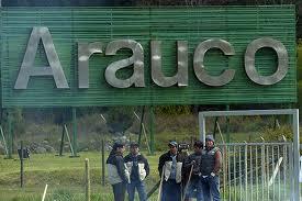 Aseguran que comunidades mapuche fueron consultadas por ampliación de Celulosa Arauco en Horcones