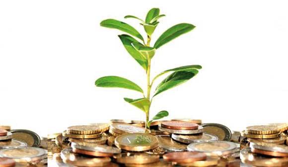 Gobierno evalúa cambios en impuestos verdes