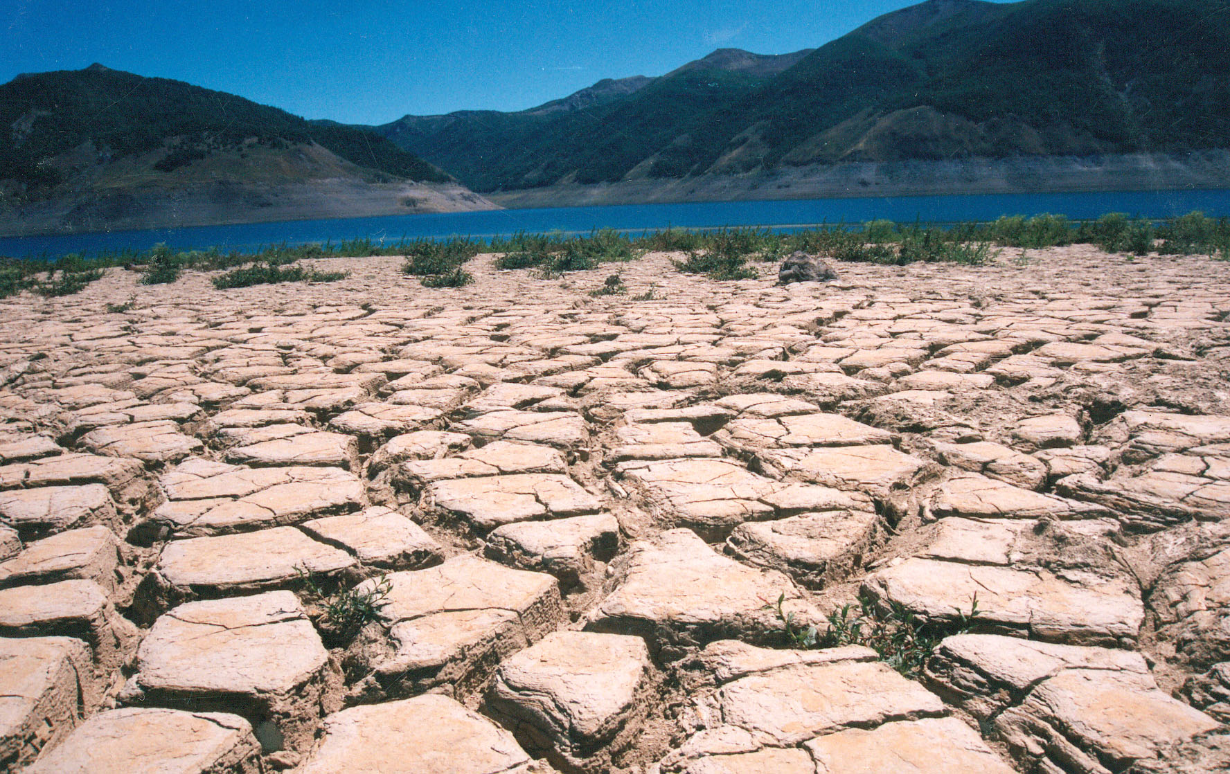 Dirección General de Aguas MOP entrega pronostico de disponibilidad de riego