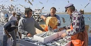 Pescadores emplazan a subsecretario Súnico por presiones desde la industria