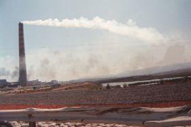 Avanza Proyecto Que Sanciona Penalmente Delitos Contra el Medio Ambiente