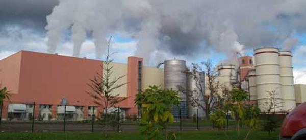 Gobierno aclara que comité técnico no sancionará concesiones para ducto de Celulosa Arauco