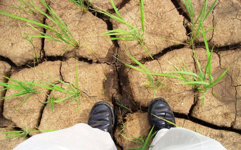 Calentamiento Global: Solo el compromiso político salvará al planeta