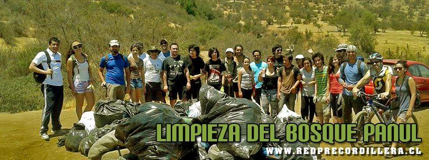 Jornada de Limpieza en el Bosque Panul