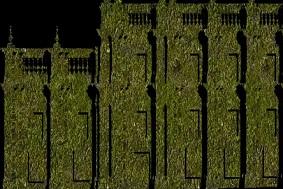 """La Moneda se """"viste"""" de verde para celebrar Día Mundial del Medio Ambiente"""