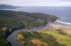 Reserva Costera Valdiviana es el área de conservación más grande de Chile