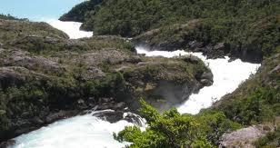 Proyecto en Aysén: Cuervo a la espera de resolución