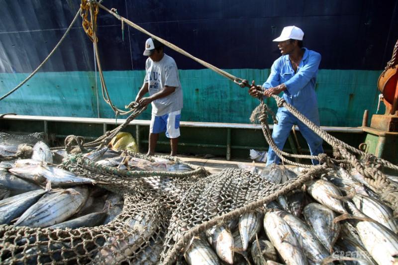 Los pescadores acusan a industriales de no respetar la veda de la merluza
