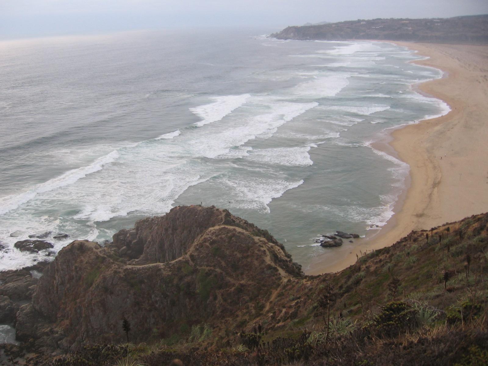 Superintendencia de Medioambiente abre investigación contra inmobiliaria por proyecto en borde costero de Tunquén