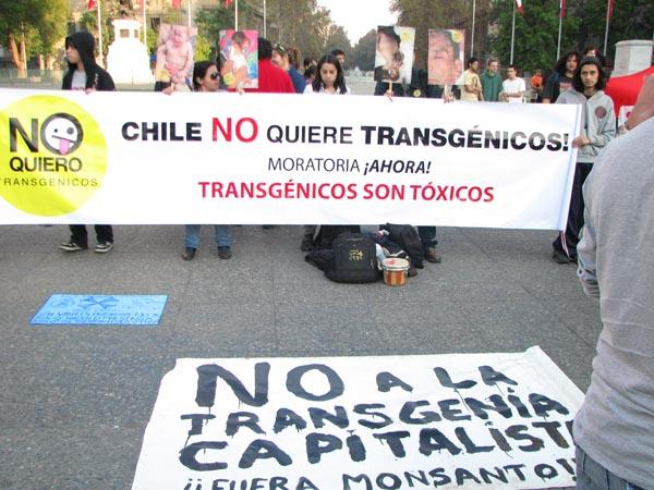 """Gobierno alista nueva """"Ley Monsanto"""": proyecto sería presentado en octubre"""