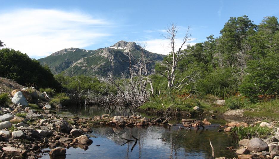 Ministerio del Medio Ambiente creó Comité Nacional para la Protección de las Montañas