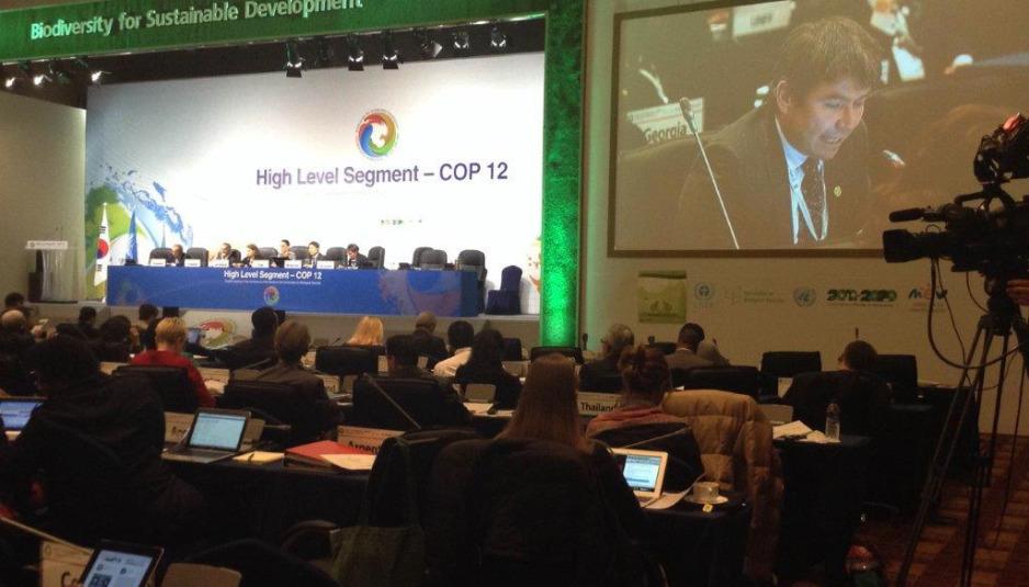 """Subsecretario Medio Ambiente: """"Chile está decidido a salvaguardar la biodiversidad"""""""