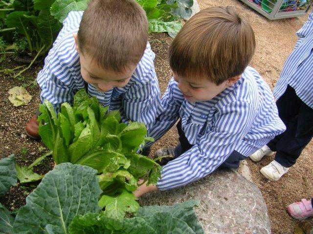 57 mil niños de jardines tendrán educación verde