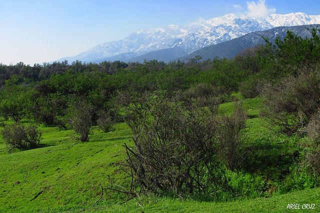 Informe dice que 10% de áreas protegidas en Chile está en manos de privados