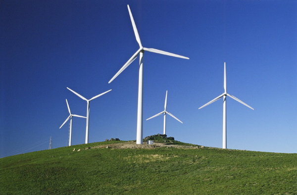 Parque eólico en reserva de Hualpén desata polémica