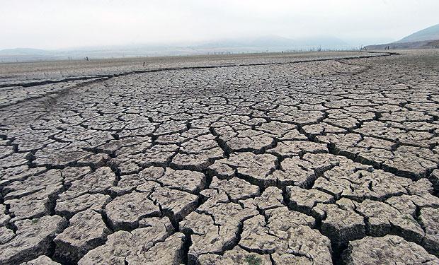 Zona sur enfrenta uno de los dos veranos más secos de últimos 50 años con efectos en el agro