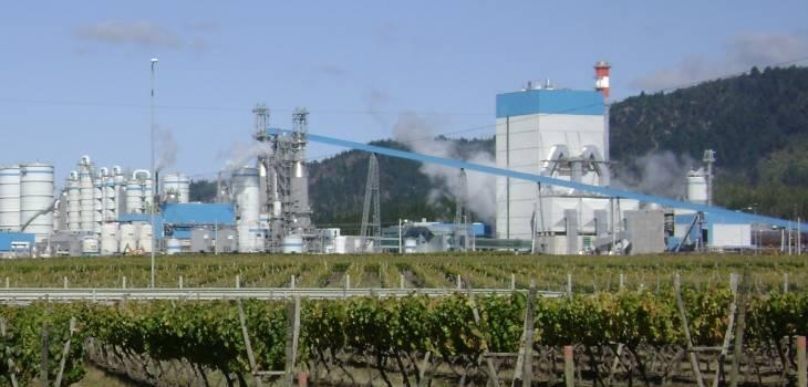 Tribunal Ambiental rechaza reclamación contra Celulosa Arauco