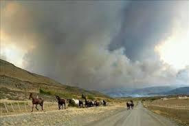 Corte de Santiago ratifica fallo que acogió reparación ambiental por incendio en Torres del Paine