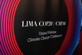 COP20: Política climática no está a la par del impulso que el mundo demanda