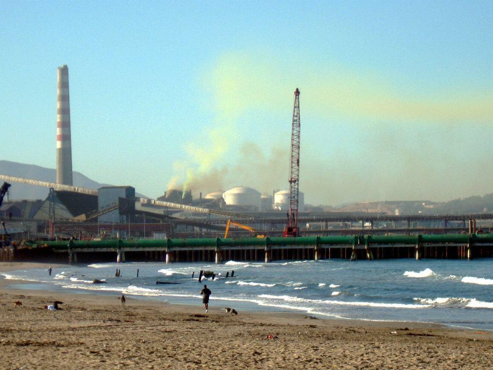 Puerto Ventanas destina 50 millones de dólares en plan medioambiental