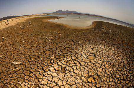 CHILE Emergencia agrícola en 70 comunas por sequía