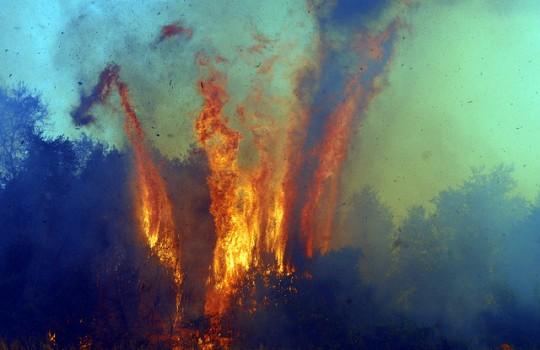 Onemi: 26 incendios activos en Chile afectan 11.597,4 hectáreas