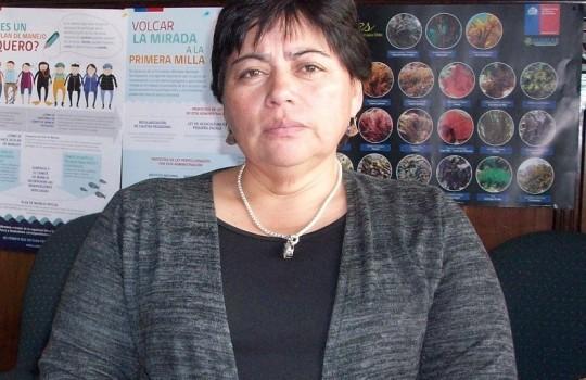 """Zoila Bustamante: """"Cuenta pública del Gobierno solo demuestra que no hay preocupación real por la pesca"""""""