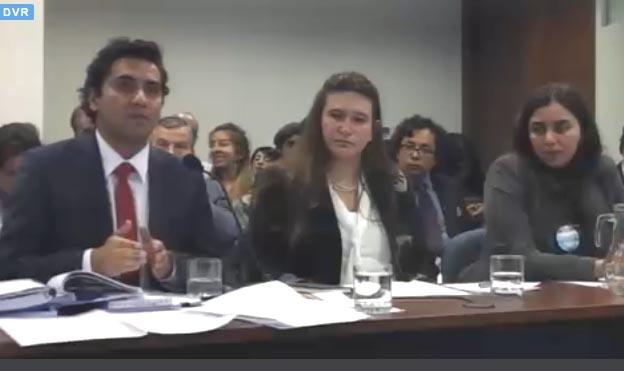 """Consejo de Defensa de la Patagonia:  """"Se acabó el tiempo de HidroAysén"""""""