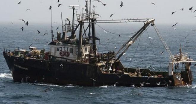 Senadores oficialistas presentan proyecto que modifica Ley de Pesca