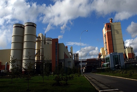 Arauco evalúa eventual compra en Brasil sin dejar de lado MAPA