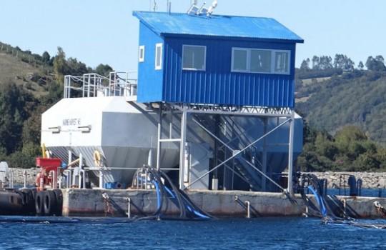 Formulan cargos contra Marine Harvest por falencias ambientales