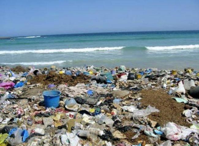 Basura afecta la biodiversidad de islas Salas y Gómez y Rapa Nui