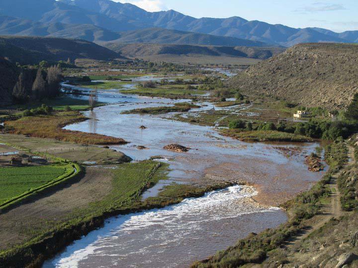 Senadores defienden protección de humedales