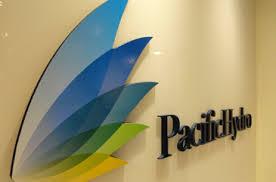 Endesa se suma a interesados por Pacific Hydro. Listado incluye a AES Corp y Statkraft