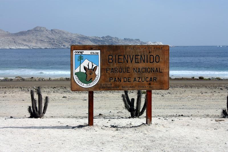 Parque Nacional:La flora y fauna vuelven a Pan de Azúcar