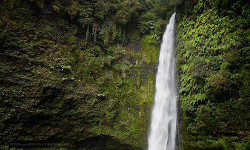 Empresa proyecta construir una mini hidroeléctrica a metros del salto de agua en Las Cascadas