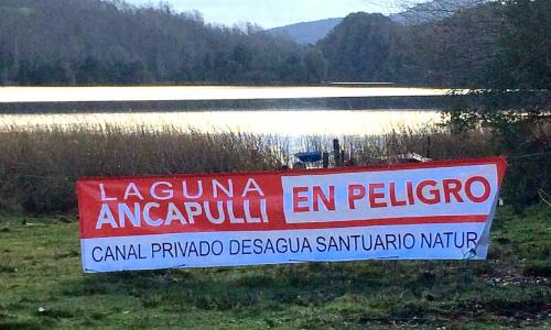 Corte obliga a empresa a dejar de intervenir la laguna Ancapulli de Pucón