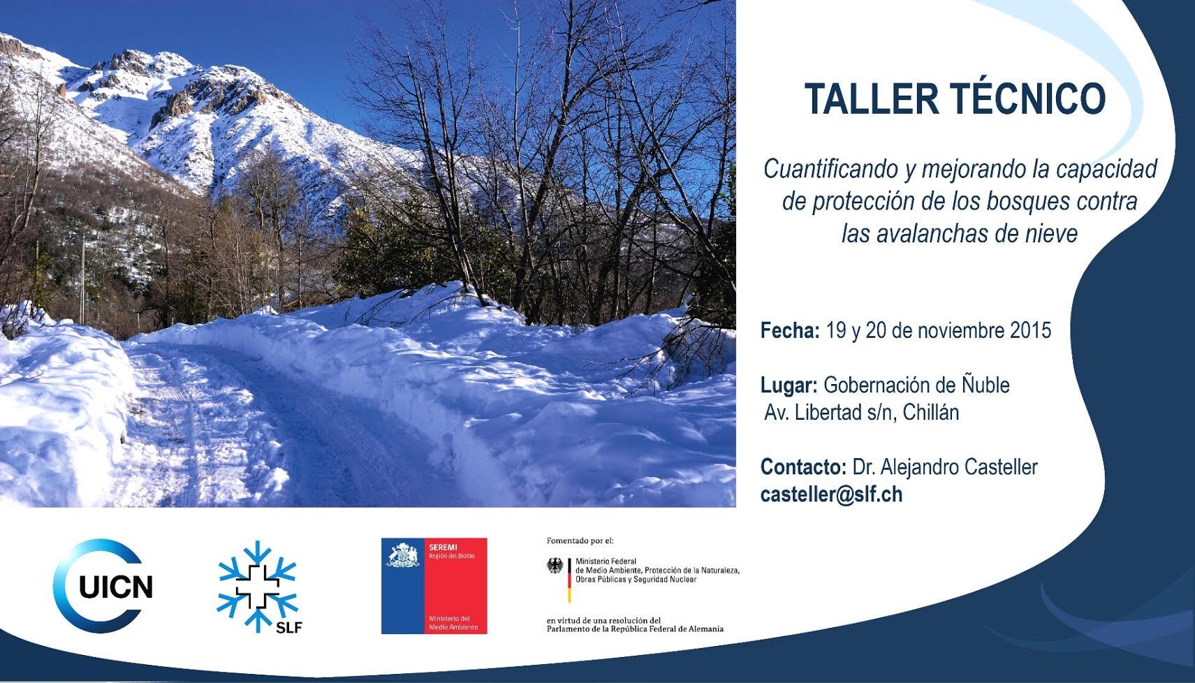 Taller Técnico: Protección de los bosques contra las avalanchas de nieve