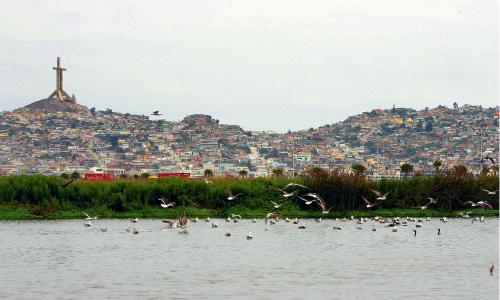 Posible contaminación del humedal El Culebrón alerta a los ciudadanos de Coquimbo