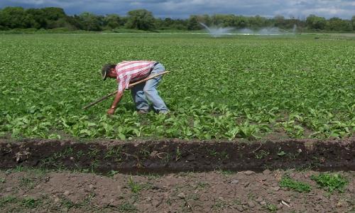 El nuevo escenario del proyecto que reforma al código de aguas