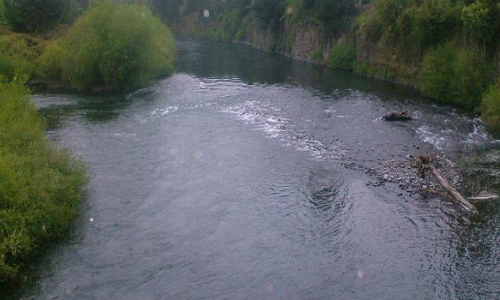 Aprueban proyecto hidroeléctrico Doña Alicia en ribera del río Cautín