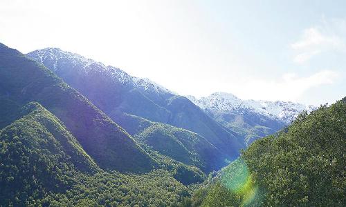 Menos del 1% de ecosistemas en peligro de Chile central está protegido