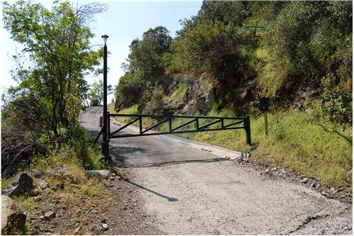 Suprema emite fallo por daño ambiental en quebrada de Huallalolén de El Arrayán