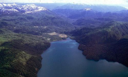 Tribunal Ambiental inspeccionó zona de posible emplazamiento de proyecto central hidroeléctrica Cuervo