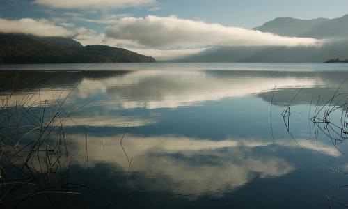 La victoria mapuche y ambientalista contra ENDESA en el lago Neltume